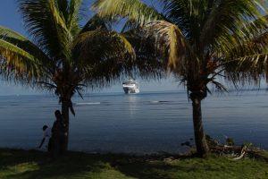 Cruise ship in-between palm trees in Costa Maya.